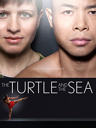 the-turtle-and-the-sea