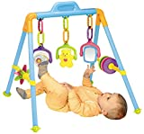 Best Baby Play Gyms - My Precious Baby Activity Play Gym Review