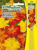 Schmuckkörbchen ' Bunte Lichter ' Mischung, sehr reichblühend, leuchtende Farben ( mit Stecketikett) 'Cosmos sulphureus' Cosmea'