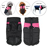 Manteau imperméable pour animal domestique - Veste chaude avec anneau en D, rembourrage, protecteur de poitrine -Pour chiens de taille moyenne ou grande