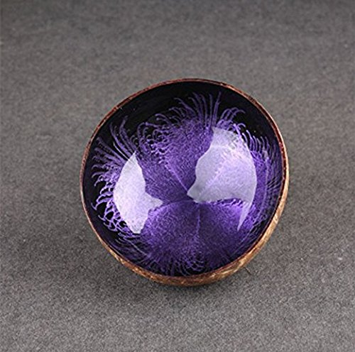 Decorative Bowl, Essort Natural Coconut Shell Bowl Dishes Mosaic Handmade Kitchen Paint Craft Home Decorate Purple
