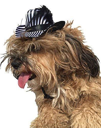 Kostüm Hunde Pimp Für - Haustier Mädchen Jungen Hund Katze Zebra Tier Pimp Party Hut Kostüm Kleid Kostüm Outfit