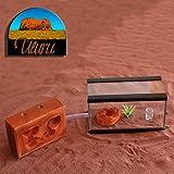 "TERRARIO DE HORMIGAS | Set inicial ""Uluru"" (talla S)"