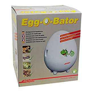 Lucky Reptile EOB-1 Egg-O-Bator, incubator, reptile incubator Lucky Reptile EOB-1 Egg-O-Bator, incubator, reptile incubator 51hay3yvGlL