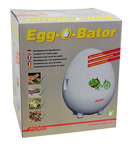 Lucky reptile eob-1, egg-o-bator, incubatrice artificiale per uova di rettile