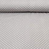 MAGAM-Stoffe Jersey-Stoff Lena Pünktchen Öko-TEX Qualität/Meterware ab 50cm / FX (09. Grau)