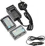 DSTE 2pcs VW-VBY100 Replacement Li-ion Battery + Charger DC106U for Panasonic HC-V110, HC-V110K, HC-V110G, HC-V201, HC-V201K