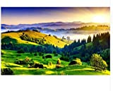 3D Tapete Wandgemälde Sunshine Lake Trestle Greenwood Wall Papers Home Decor Designer 3D Landschaft Tapete Seidentuch 300X210cm Kleber senden