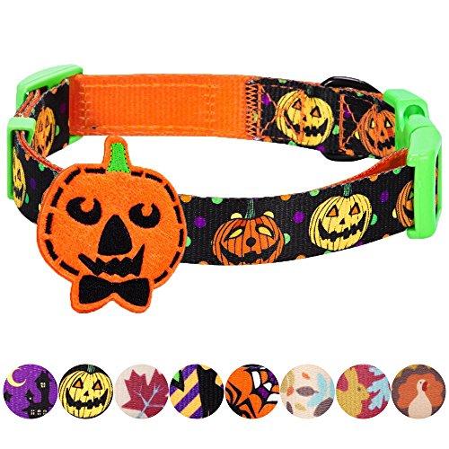 (Blueberry Pet Feiertags-Halsbänder 2cm M Halloween Ernte Kürbis Klassisches Designer Hundehalsband mit Abnehmbarer Deko)