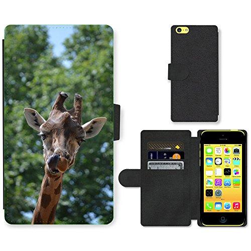 Just Mobile pour Hot Style Téléphone portable étui portefeuille en cuir PU avec fente pour carte//m00139356Girafe Animaux Langue//Apple iPhone 5C