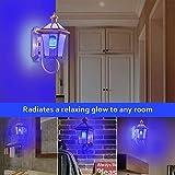 LED Blau Flamme Glühbirne?E27 Led Glühbirne Feuer Glühbirne?bewegliche flackernde Feuereffekt LED Flamme lampe 7W mit 4 Modi Feuer Effect Birne Und Schwerkraftfühler Dekorative Leuchte für (2 Packung) für LED Blau Flamme Glühbirne?E27 Led Glühbirne Feuer Glühbirne?bewegliche flackernde Feuereffekt LED Flamme lampe 7W mit 4 Modi Feuer Effect Birne Und Schwerkraftfühler Dekorative Leuchte für (2 Packung)