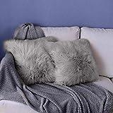 DQMEN 2Pcs Housse de Coussin, Fausse Fourrure Deluxe Décoratif Canapé Chambre Lit Super Doux Peluche Mongolie Taie d'oreiller (2Pcs Gris, 45 x 45cm)