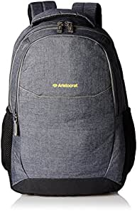 Aristocrat Grey Casual Backpack (LPBPDIO3GRY)