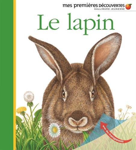 Le lapin par Collectif