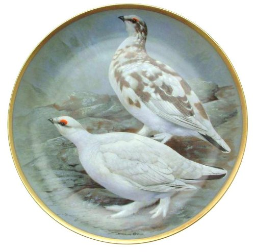Franklin Porcelain C1979 Haviland Limoges Gamebirds du Monde Basil Ede Rock des Saules Assiette Cp1885