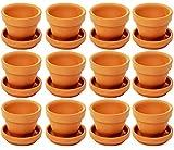 Petite Terre cuite Pots avec Saucer- Bulk Argile Pots de fleurs avec soucoupes, Mini pot de fleurs Pots de fleurs pour...