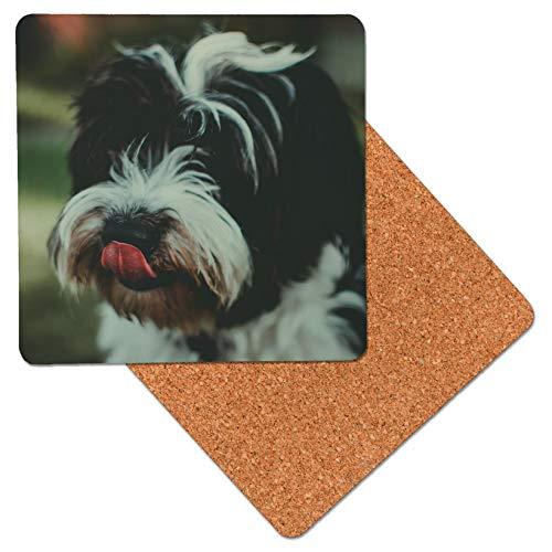 Schwarz-Weiß-Shih Tzu Hund Lippen lecken Erstklassiger Holztisch-Untersetzer mit Korkunterlage - Untersetzer für Getränke (Packung mit 2) -