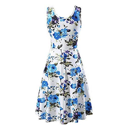 Handsome Girl dresses Summer Dress Women Casual O-Neck Floral Print Slim Sleeveless Mini Dress Tank Dress Clothes Women Vestidos BU L -