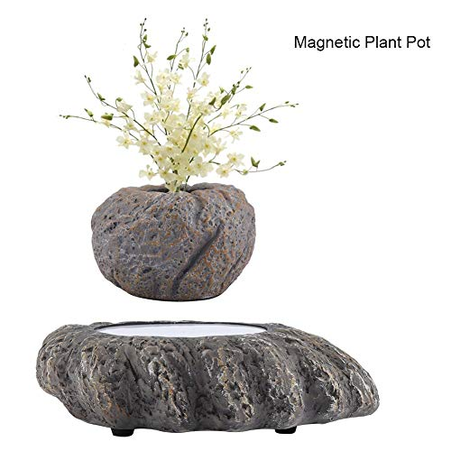 Megnetic Levitating Air Scenery Bonsai Wood Pot Flotante Suspensión Rotación Flor Planta de Jardín Decoración De La Oficina En Casa Regalo(EU)
