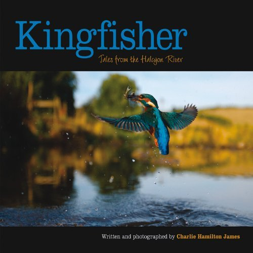 kingfisher-tales-from-the-halcyon-river-by-charlie-hamilton-james-7-may-2009-hardcover