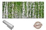 Pared trasera de la cocina de DekoGlas 125x50cm protección contra salpicaduras abedul bosque árboles