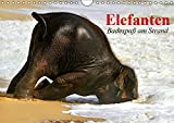 Elefanten. Badespaß am Strand (Wandkalender 2019 DIN A4 quer): Elefanten Babys beim Baden in Thailand (Monatskalender, 14 Seiten ) (CALVENDO Tiere)