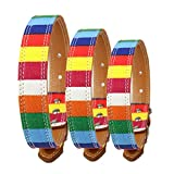 Lushpetz Rainbow Fabric Canvas Dog Collar in 5 sizes (Small length 40cm)