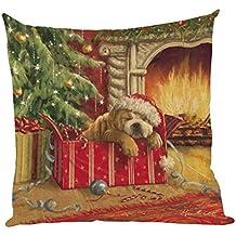 ZARU Impresión de Navidad Sofá cama cubierta de almohadas Cojín decoración del hogar (E)