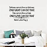 Wandaufkleber Schlafzimmer Vinyl Wall Decals Quotes Sayings Words Art Deco Lettering Inspirational Darkness Cannot Drive Out Darkness