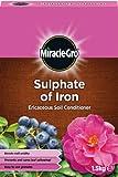 Miracle Gro Sulfat von Eisen 1,5kg