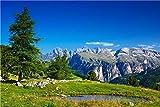 Quadro Stampa su Tela – Scogliera Prateria Piscina Montagna Albero Cielo Blu Paesaggio Fotografia Decorazione da Parete – 120X75 cm