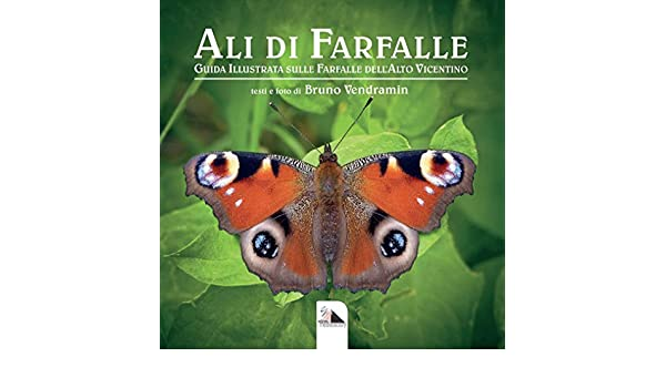 Risultati immagini per le ali di farfalla vendramin