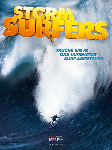 Storm Surfers Cover
