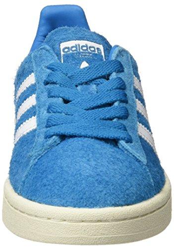 Adidas Campus, Zapatos De Fitness Para Hombres, Varios Colores (blanco / Crema (bold Aqua / Ftwr White / Cream White))