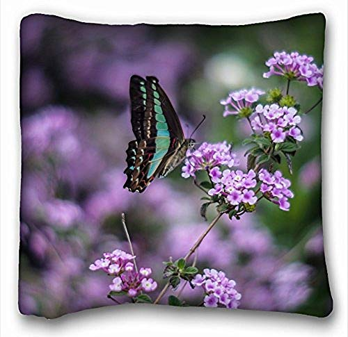 VVIANS Pillow Cover Insect Butterfly Green Wings Purple Flowers Macro blurring*Twin Sides16X16 inch