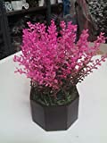 #8: carmer red bud flowering shrubs plant with round wooden pot