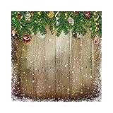 OERJU 3x3m Weihnachten Party Dekoration Hintergrund Weihnachtszweige Glocke Ball Lebkuchen Schnee Hölzern Tafel Hintergrund Fotografie Video Party Kinder Persönlich Porträt Foto Studio