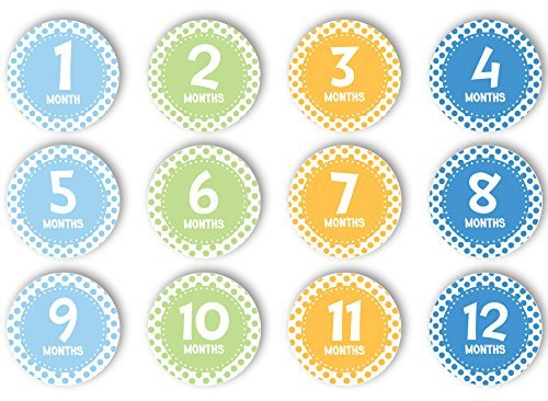 First Year Belly Stickers, Blue by Tiny Ideas