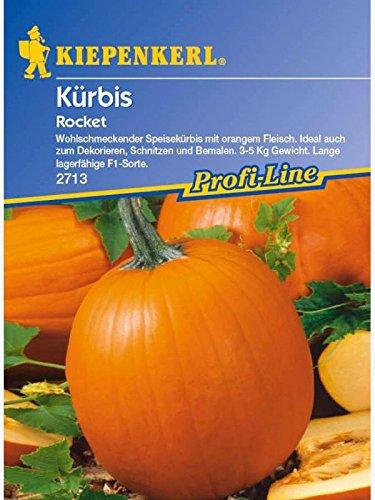 Kürbis Rocket F1