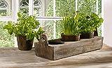 Jardinière à épices pour rebord de fenêtre