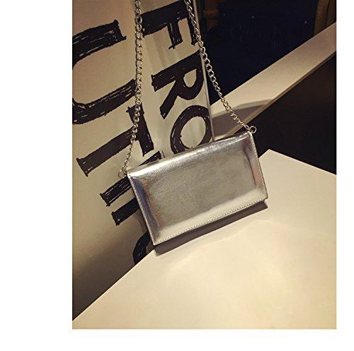 LiZhen di Stile coreano nuovo Mini party catena pacchetti piccoli pacchetti a mano in pelle Ladies borse tracolla Messenger Bag di marea, argento puro Argento puro