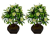 Thefancymart artificial Set of 2 Flower Bonsai with Wood pot for decoration ( Code-557 )