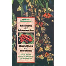 Millions of Monarchs, Bunches of Beetles: How Bugs Find Strength in Numbers