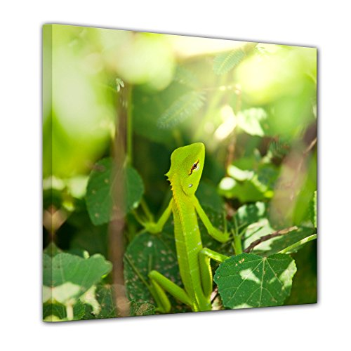 Kunstdruck - Chamäleon - Bild auf Leinwand - 60x60 cm einteilig - Leinwandbilder - Tierwelten - Leguan - grüne Echse auf Einem Blatt