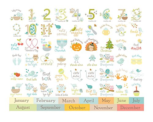 CR Gibson Baby's First Year Calendar -- Newborn Baby Gift Set / Keepsake / Memory Book / Baby Journal (Nest)