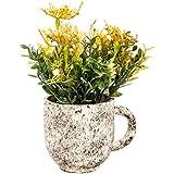 Scrafts Green Dry Flower Arrangement Fibre Base Artificial/Dry/Faux Flowers Arrangement For Home Décor/Living Room Décor/Table Décor/Office Décor/Wedding Décor/Party Décor. LBH(inches)=4X4X8