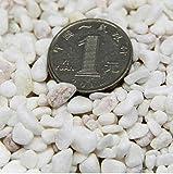 KINGDUO 80G Bricolaje Micro Paisaje Mini Piedra Decoración Jardín Plantas Suculentas Flor Olla Decoración-Piedra Blanca
