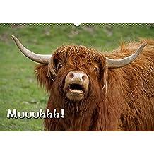 Muuuhhh! (Wandkalender immerwährend DIN A3 quer): Immerwährender Terminplaner mit Kühen (Monatskalender, 14 Seiten) (CALVENDO Tiere) [Kalender] [Jun 10, 2013] Berg, Martina