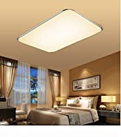 SAILUN 48W Ultra-thin Modern LED Ceiling Light, Silver Warm White(2800K-3500K), 3800-4000LM Super Bright, AC 85-265V 50Hz, for Living Room Bathroom Bedroom and Dining Room LED Ceiling Lights from Generic