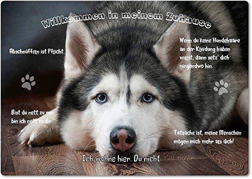 Merchandise for Fans Blechschild/Warnschild / Türschild - Aluminium - 20x30cm - - Willkommen in Meinem Zuhause - Motiv: Husky Schlittenhund Siberian Husky - 07